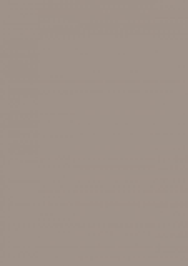 Μελαμίνες fundemax, 2206